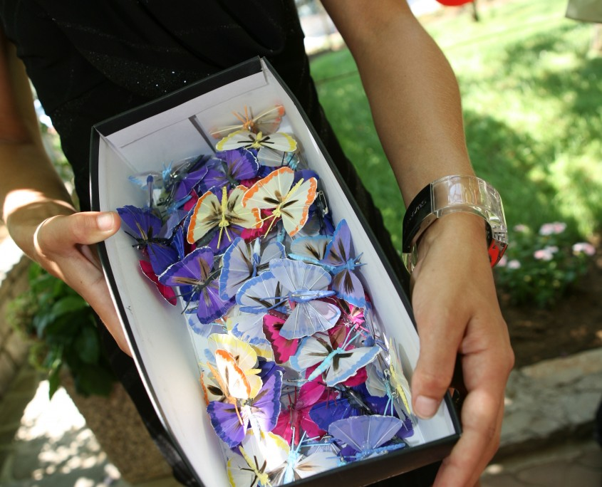 Naprsni metuljčki